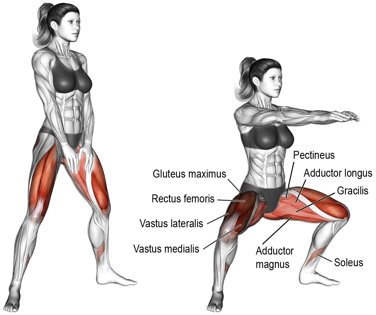 Bacakları İnceltmenin Yolları: Bacak İncelten Egzersizler